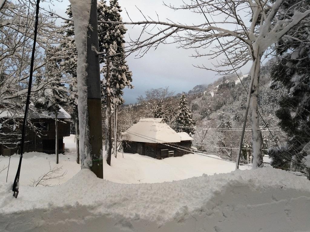 1214雪路を参る.jpg